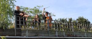 Bristol Ceilidh Quartet: Wedding Barn Dance and Ceilidh Band